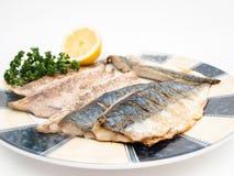 Fried mackerel filet Stock Images