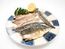 Fried mackerel filet Royalty Free Stock Images