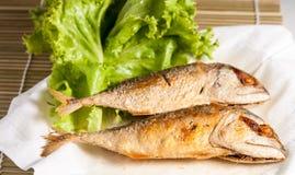 Fried Mackerel Fish Royalty-vrije Stock Afbeelding