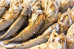 Fried mackerel fish Royalty Free Stock Photography