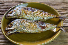 Fried mackerel fish Royalty Free Stock Photos