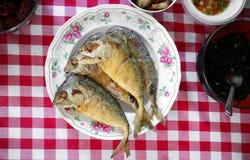 Fried Mackerel fish royalty free stock photo