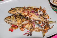 Fried mackerel. Mackerel with fried onion Royalty Free Stock Images