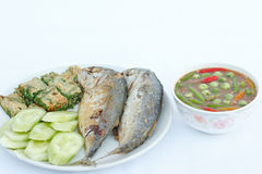 Fried Mackerel and Shrimp paste chili sauce. Royalty Free Stock Image