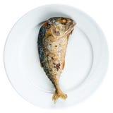 Fried mackerel. On white dish , favorite food of Thai people royalty free stock images