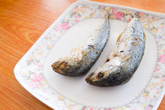 Fried mackerel Stock Photography