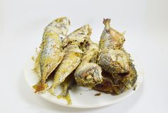 Fried mackerels on the dish Royalty Free Stock Photo