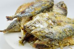 Fried mackerels on the dish Royalty Free Stock Image