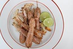 Fried mantis shrimp royalty free stock photos
