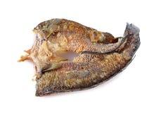 Fried marinated baby mud-fish one sun on white Stock Image