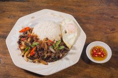 One dish meal thai food. Fried meat with basil leaves and spicy chilli spicy with fried eggs Royalty Free Stock Photography