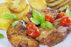 Fried meat and chips Stock Photos