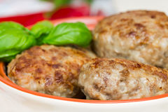 Fried meat cutlets Stock Photos