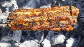 Fried meat on a fire royalty free stock photo