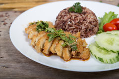 Fried meat serve with white rice Stock Photos