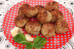 Fried meatballs Royalty Free Stock Photo