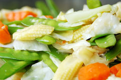 Fried mix vegetables Royalty Free Stock Photo