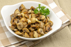 Fried mushrooms Royalty Free Stock Images