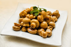 Fried mushrooms on a plate Stock Images