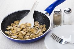 Fried mushrooms, spoon in frying pan, plate, fork, salt, pepper. Fried mushrooms, plastic spoon in frying pan,  plate and fork, salt and pepper on wooden table Stock Images