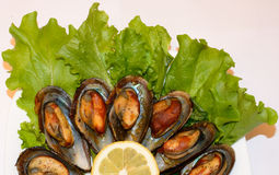 Fried mussels with lemon Stock Photo