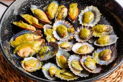 Fried mussels in a pan close up stock image