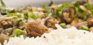 Fried mussels with rice Royalty Free Stock Photography