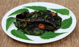 Fried neem leaves Stock Photos