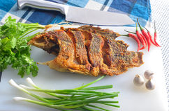 Fried nile tilapia Royalty Free Stock Image