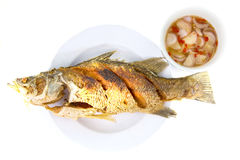 Fried nile tilapia fis Stock Images