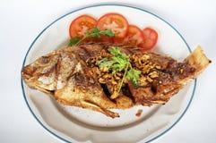 Fried Nile tilapia fish Stock Images