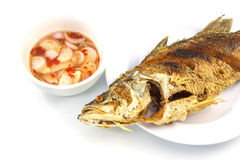 Fried nile tilapia fish Stock Photo