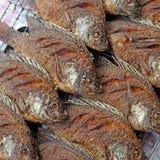 Fried nile tilapia or oreochromis nilotica fish Stock Images