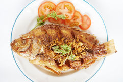 Fried Nile tilapia river fish Stock Photography