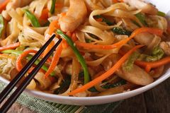 Fried noodles with chicken and vegetables macro. horizontal Royalty Free Stock Image