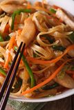 Fried noodles with chicken and vegetables macro. vertical Royalty Free Stock Photo