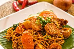 FRIED NOODLES MEE GORENG. Fried Noodles is a flavourful and spicy dish common in Indonesia, Malaysia, Brunei Darussalam and Singapore. It is made with thin stock photos