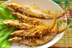 Fried Nue-on fish on a mealtime Stock Photography