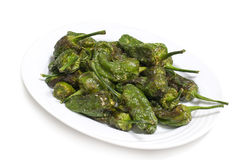 Fried padron peppers Stock Photography