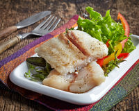 Fried pangasius fish fillet pieces Stock Images