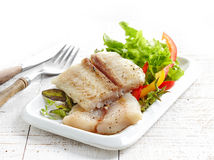 Fried pangasius fish fillet pieces Royalty Free Stock Photos