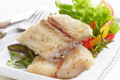 Fried pangasius fish fillet pieces Stock Image