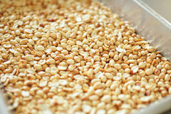Fried peanuts Royalty Free Stock Image