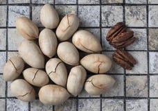 Fried Pecan Nuts inteiro com Shell rachado Fotos de Stock