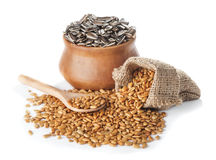Fried peeled  and  crude sunflower seeds Stock Images