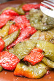 Fried peppers Royalty Free Stock Image
