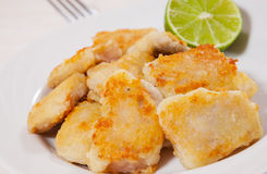 Fried pieces of fish fillets Royalty Free Stock Photos