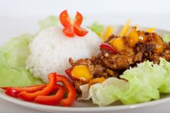 Fried pieces of pork  with rice Stock Images