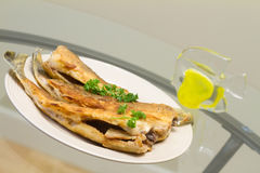 Fried pike perch Royalty Free Stock Photography