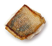 Fried pike perch fillet Royalty Free Stock Image